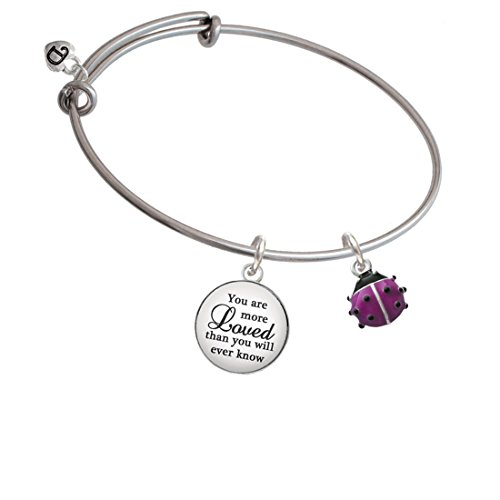 - Silvertone Mini Hot Purple Ladybug You Are More Loved Bangle Bracelet