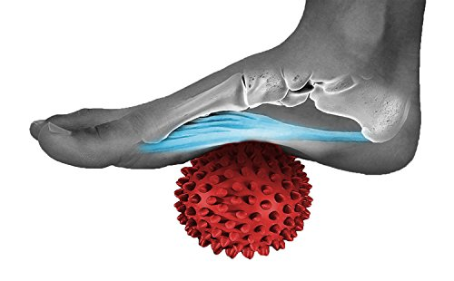 Moon Glory Massage Ball - Physical Therapy Equipment - Spiky for Deep Tissue Foot, Back, Plantar Fasciitis & All Over Body Deep Tissue Muscle Therapy