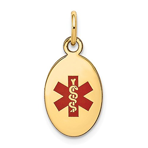 14K Yellow Gold Medical Jewelry Pendant 9.5 mm 16 mm Red Medical Alert Pendants & Charms Jewelry