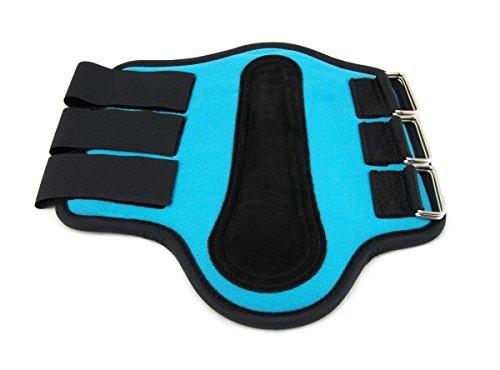 (Southwestern Equine Splint Boots Horse Sizes - Neoprene - Different Colors (Turquoise,Medium))