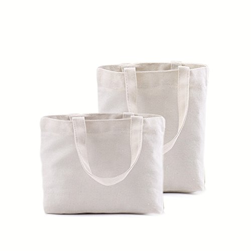 Ecology Organic Cotton Deluxe Reusable Grocery Bag Gbag WVHL B0797LFWNQ Natural Color,Variety Set for 2 Size Natural Color,Variety Set for 2 Size