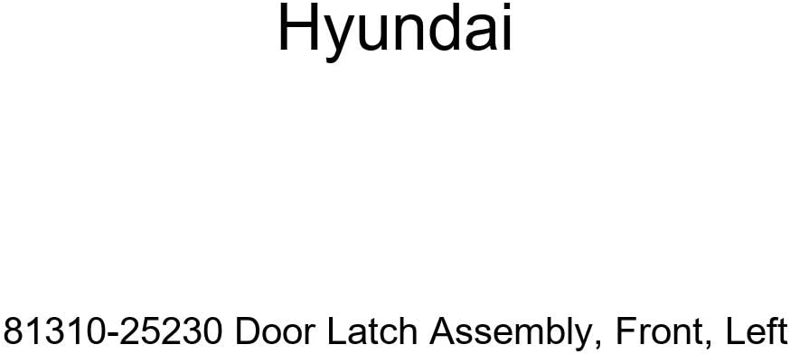 Front Genuine Hyundai 81310-25200 Door Latch Assembly Left