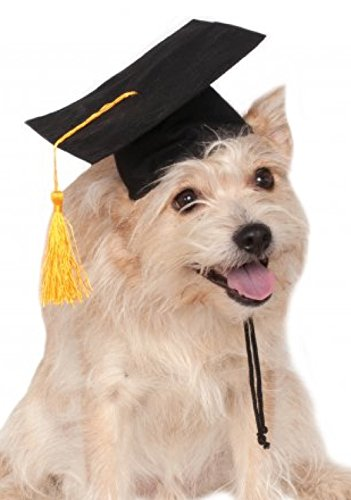Rubie's Black Graduation Hat Pet Accessory, Medium/Large