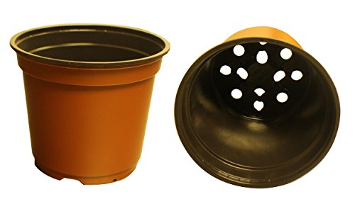 20 NEW 6 Inch TEKU Plastic Nursery Pots - Standard ~ Pots ARE 6 Inch Round At the Top and 5 Inch Deep. Color: Terracotta by Teku