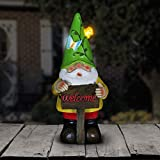 Exhart Solar Light up Gnome Garden Statue, Solar Powered, Resin, Green Hat, 5'' L x 5'' W x 10'' H