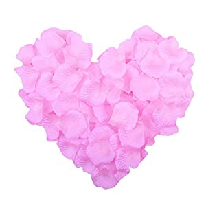 NEO LOONS 1000 Pcs Artificial Silk Rose Petals Decoration Wedding Party 4