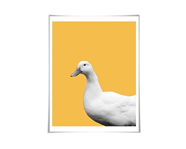 Amazon.com: Duck Art Print. 5 Sizes/60 Colours. Duck Photo. Nursery ...