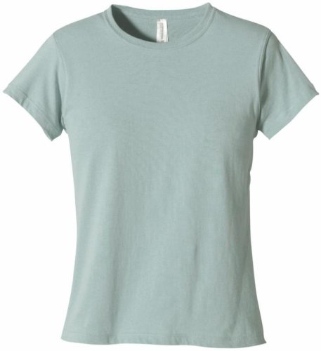 (econscious Women's 100% Organic Cotton Short Sleeve Tee (Sky, Large))