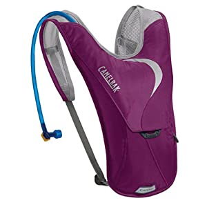 Camelbak Products Women's Charm Hydration Pack, Purple Majesty, 50-Ounce