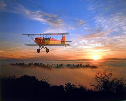 Bi-plane WACO 10 Vintage Plane Aviation Wall Decor for sale  Delivered anywhere in USA