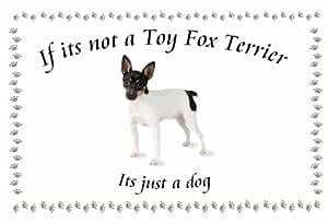 Toy Fox Terrier - perro flashsellerz Llaveros - si no es ...