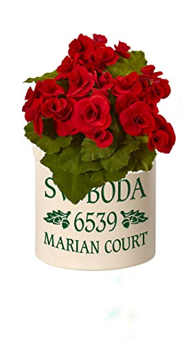 Personalized Oak Leaf 2 Gallon Stoneware Green Crock Bundled with Red 11'' Begonia Bush Artificial Flower by GENERIC