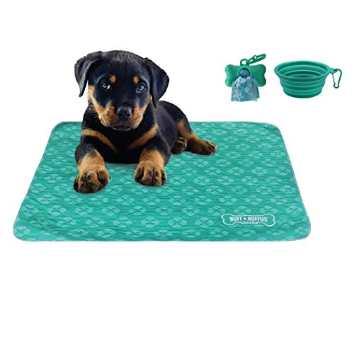 Ruff 'n Ruffus Washable Puppy Pee Pads for Dogs (Set of 2) | Free Travel Bowl, Poop Bags and Dispenser | Extra Large 32 x 36 Underpads for Potty Training, Incontinence, Whelping (Aqua (Free Bonus))