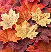 Package of Approximately 80 Assorted Rich Fall Colored Silk Maple Leaves for Weddings Events and Decorating