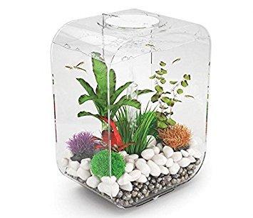biOrb Life 15 Aquarium with MCR - 4 Gallon, Transparent by biOrb