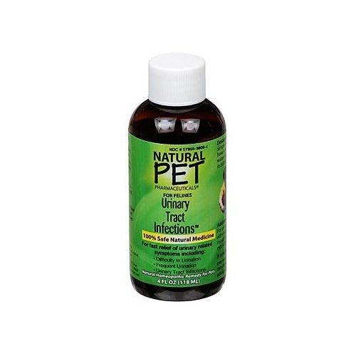 King Bio - Natural Pet infections