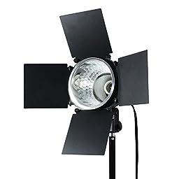 LimoStudio 250 Watt