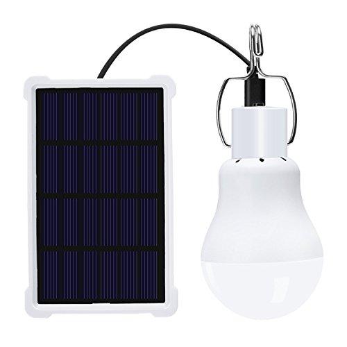 Chicken Coop Solar Powered Lighting in Florida - 8