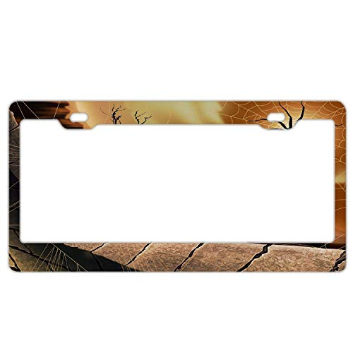 Light year GT Funny License Plate Frame Unique Design Vanity License Plate, Metal Car License Plate12×6inch Halloween Spirit Spider -