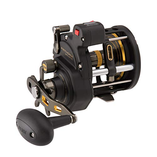 Penn, Fathom II Level Wind Line Counter Saltwater Casting Reel, 30, 4.3:1 Gear Ratio, 31