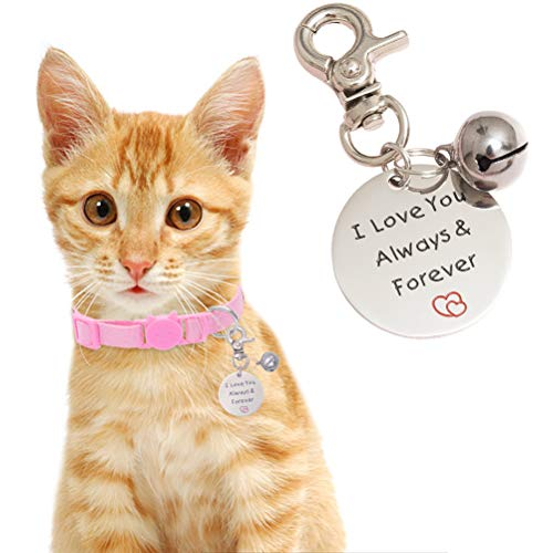 SCENEREAL Cat ID Tags with Bell - Gifts for Pet Cats Dogs,Stainless Steel Pendant with Gift Bag Pet Label for Dogs Cats Collar