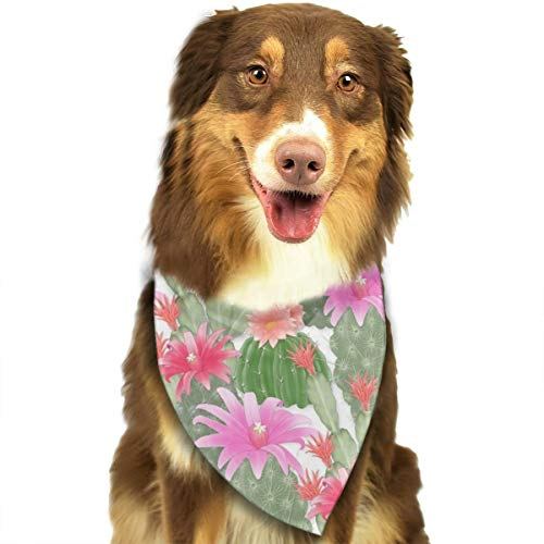 OURFASHION Cactus Garden Bandana Pet Scarf Washable Adjustable Triangle Bow Tiess for Pet Dog and Cats -