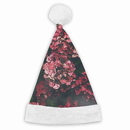 Hat Hydrangea Pink - Christmas Hat Hydrangea Pink Flowers Hat for Adults and Child Red Velvet Comfort Liner Christmas