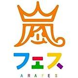 アラフェス 2013 グッズ  ビーズクッション 嵐フェス
