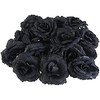 Amazon tinksky 50pcs silk rose flower heads for hat clothes winomo 20pcs silk rose flower heads for party home decoration black mightylinksfo