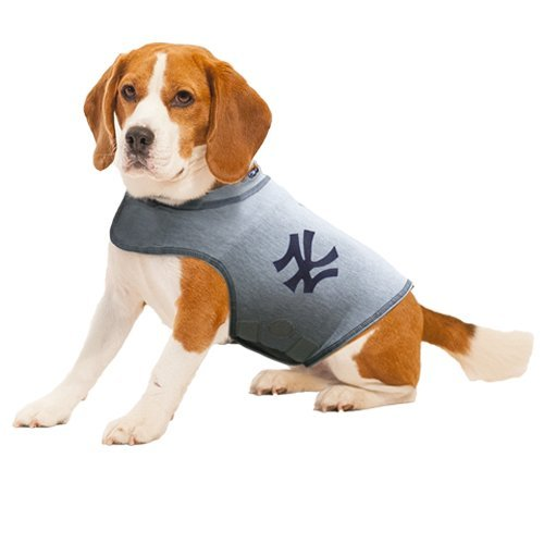 ThunderShirt Dog Anxiety Polo Shirt, Major League Baseball Officially Licensed - NY Yankees (Large) by Thundershirt