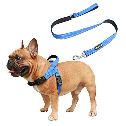 iChoue No Pull Dog Harness Leash Set Easy Wear Adjustable Comfy Neoprene Padded Lightweight Harnesses with Handle fit Chest Girth 19.5 to 27.5
