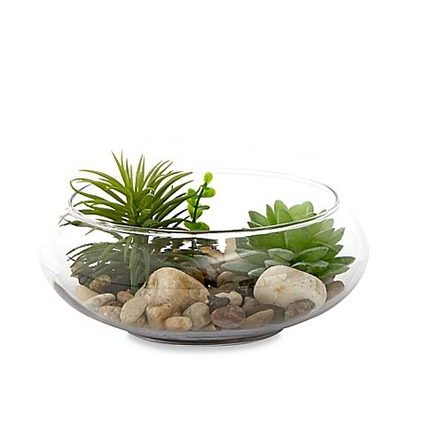 Habitat Medium Round Bowl Terrarium with Faux Fill l Faux Succulents, Stones and Pebbles for a Realistic Addition to your Home (Airline Tickets To Florida compare prices)