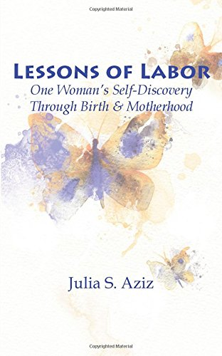 Msi White Book (Lessons of Labor: One Woman's Self-Discovery through Birth and Motherhood)