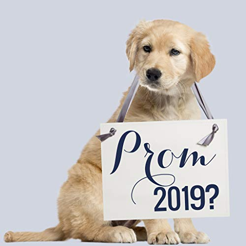 Prom 2019 Sign for Promposal Invite School Dance Invitation   Will You Go To Prom With Me? Creative Way To Ask Her or Him To High School Prom ()