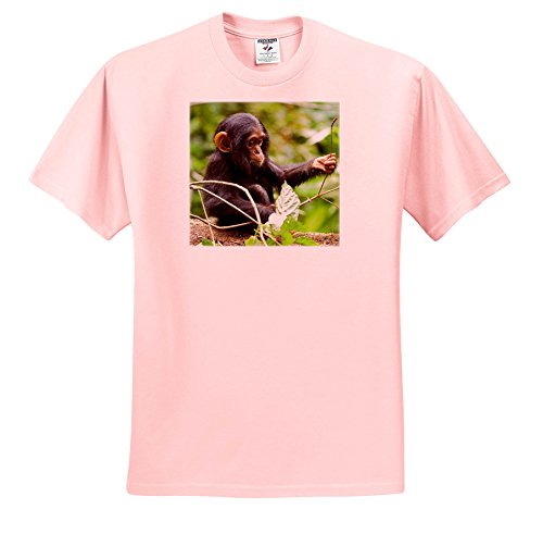 3dRose Danita Delimont - Baby Animals - Africa, Uganda, Kibale NP. An Infant Chimpanzee Plays With a Stick. - T-Shirts - Light Pink Infant Lap-Shoulder Tee (18M) (TS_276639_71) by 3dRose