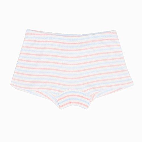Toddler Little Girls Boyshort Panties Kids Cotton Briefs Underwear Set 6 Pack (3T-4T, Style1) by Junoai (Image #2)