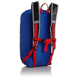 JanSport Sinder 22 Backpack T34G (Blue Streak)