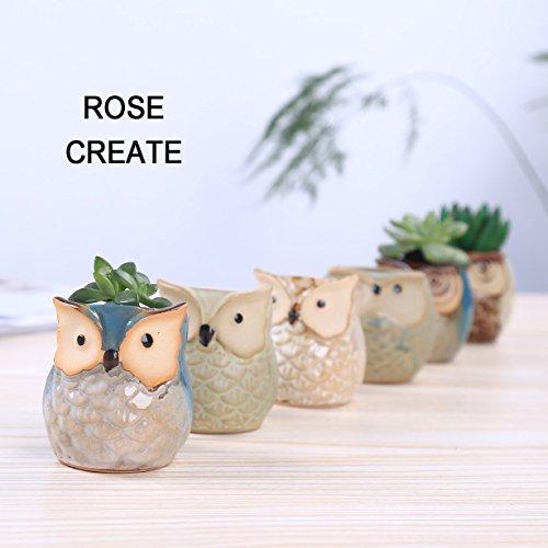 The 8 best ceramic items