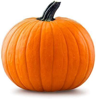 Amazon Com 20 Big Max Pumpkin Seeds Grows Pumpkins Up To 100 Lbs Great For Pies And Halloween By Rdr Seeds Garden Outdoor