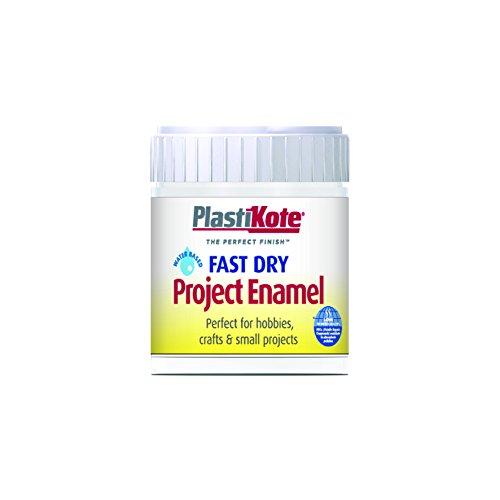 (Plastikote B5w 59ml Enamel Paint Bottle - White Matt)