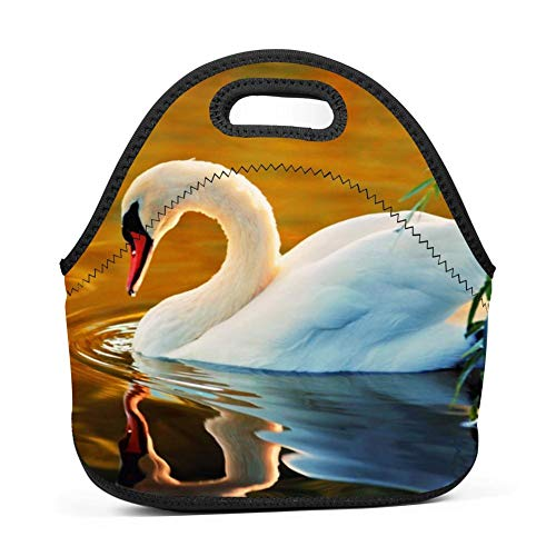 34037069b33f SLBDBDMH Lunchbox Lunch Bag Elegant-Swan Handbag Lightweight Fashion Lunch  Tote Bag Insulated Neoprene for School Work Office