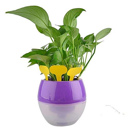 Etiquetas de papel para flores y plantas, etiquetas para jardines ...