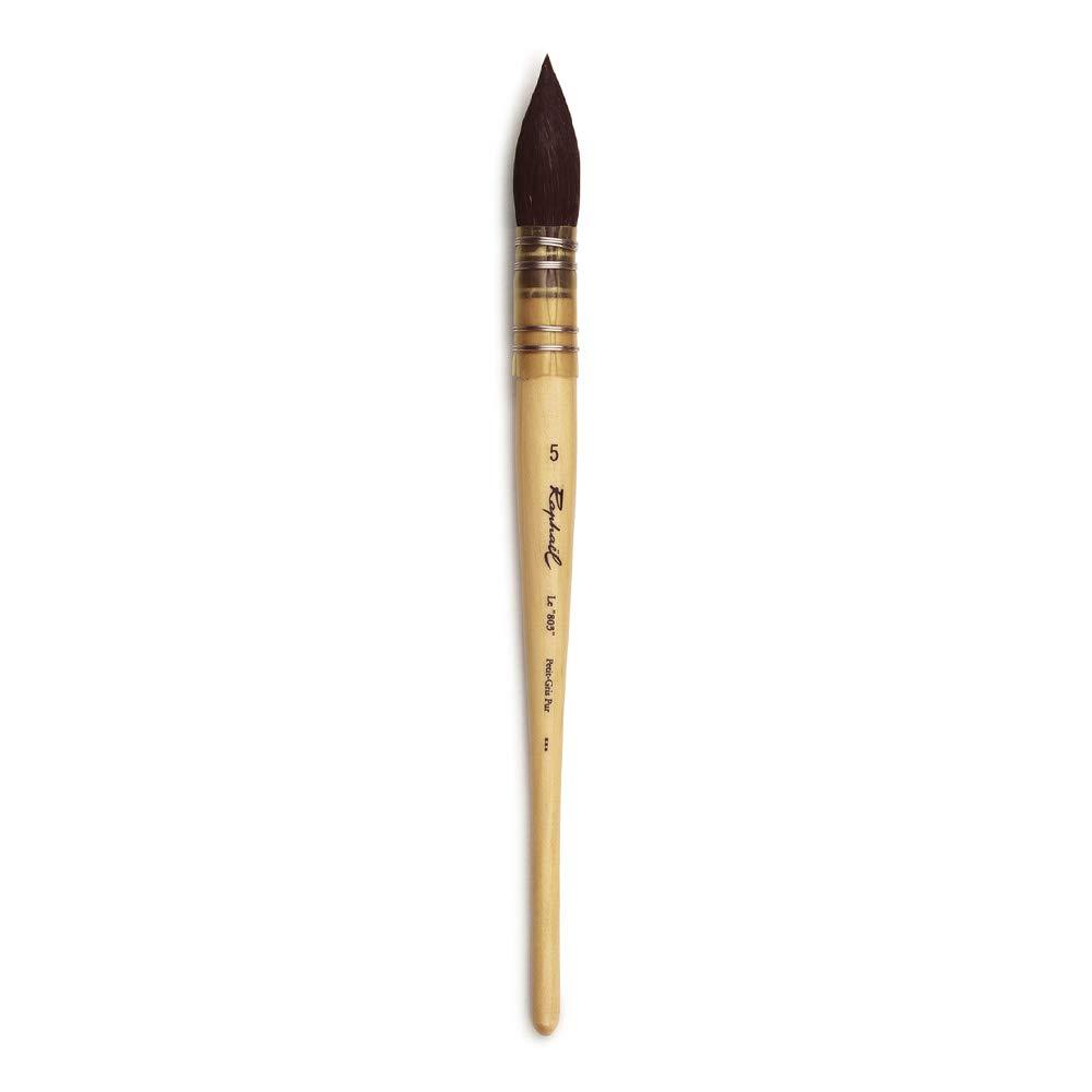 R Brush Series 803 Dimensione 5