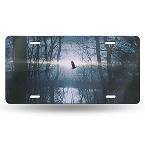 - Pingshoes Forest Tree Bird Sunset Aurora License Plate Frame Aluminum Metal License Plate Cover Sign Tag Car Accessories Home Pub Bar Decor with 4 Holes 6 X 12