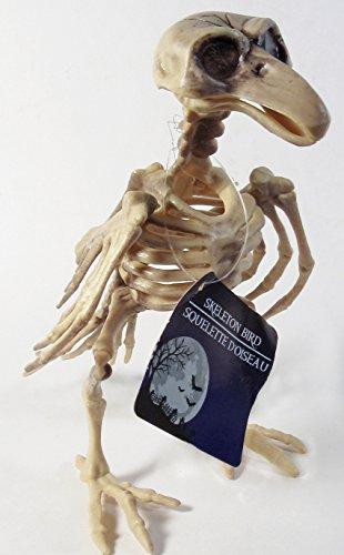 Bird Skeleton Halloween Decor Prop 7 (Bird Head Skeleton)