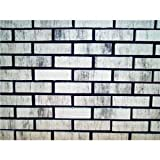 Zygrove Corp/Z-Brick Brands Zc016205 Ctn 20 Silver Brick Facing Decorative Brick