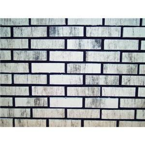 Zygrove Corp/Z-Brick Brands Zc016205 Ctn 20 Silver Brick Facing Decorative Brick by ZYGROVE CORP/Z-BRICK BRANDS