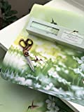 "Scentennials Hummingbird Harmony (6 Sheets) Scented Fragrant Shelf & Drawer Liners 16.5"" x 22"" - Great for Dresser, Kitchen, Bathroom, Vanity & Linen Closet"