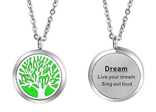 HooAMI Aromatherapy Essential Oil Diffuser Necklace - Stainless Steel Engraved Pendant Locket Jewelry,12 Refill Pads (Dream) (Steel Pendant Solid Stainless)
