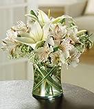 Elegant Flowers - Flowers For Sympathy - Sympathy Flower Arrangements - Sympathy Plants - Same Day Sympathy Flowers - Condolence Flowers